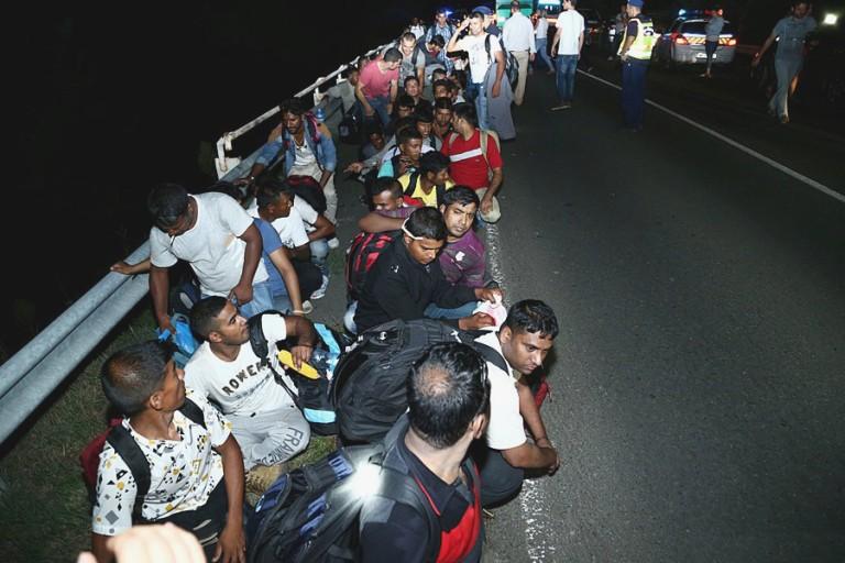 migrants-768x512