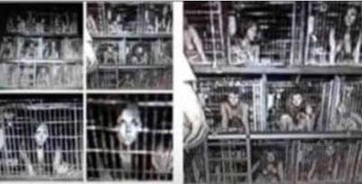 enfants en cages